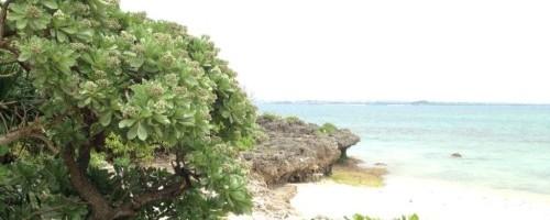 宮古島ビーチ