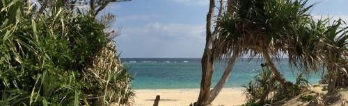 自然のビーチ